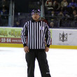 Ice-hockey Referee - Stock Photo