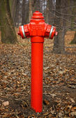 Close-up red fire hydrant — Stockfoto