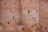 Detailní zdi opevnění hradu — Stock fotografie