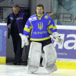 Goalkeeper Igor Karpenko of Ukraine - Stock Photo