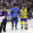 Individual Awards of IIHF World Championship — 图库照片