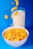 Breakfast from milk cornflakes — Stock Photo