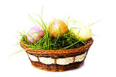 Easter eggs on green grass — Stock Photo