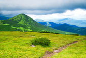 Path in mountains in storm day — Stock Photo