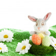 Funny easter bunny — Stock Photo