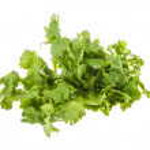 Closeup photo of fresh coriander, cilantro (Leaves & Roots) on white background — Stock Photo #10204242