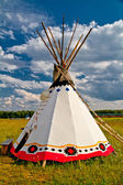 An indian teepee set up in a meadow among pine woods (portrait o — Stock Photo