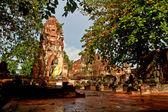 Buddha Statue - Ayuthaya, Thailand — Stock Photo