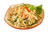 Japan salad with noodles and vegetables — Stock Photo
