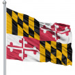 Waving Flag of USA state Maryland - Stock Photo
