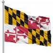 agitant le drapeau d'État maryland aux usa — Photo