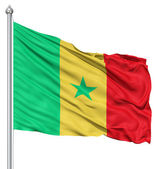 Waving Flag of Senegal — Stock Photo