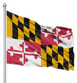Waving Flag of USA state Maryland — Stock Photo