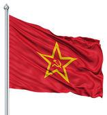 Sovyetler birliği bayrağı sallayarak — Stok fotoğraf