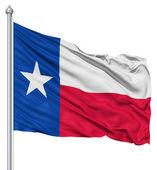 Teksas cumhuriyeti bayrağı — Stok fotoğraf