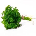 Fresh leaf of parsley — Stock Photo