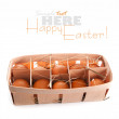 Packing of eggs - Stock Photo