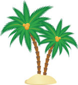 Green palm — Stock Vector