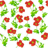 Poppies pattern — Stock Vector