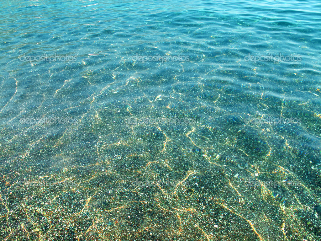 fondos de mar transparente - photo #15