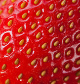 Extreme macro of strawberry — Stock Photo