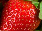 Macro of strawberry — Stock Photo