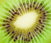 Ripe kiwi — Stock Photo