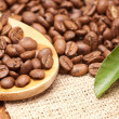 coffee beans — Stock Photo #9398884