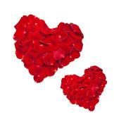 Heart shape made out of rose — Stock Photo