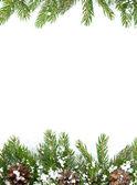 Boże narodzenie ramy i stożki śniegu — Zdjęcie stockowe