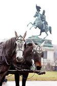 Statue at heldenplatz Vienna — Stock Photo