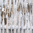 Stock Photo: Snowbound fence.