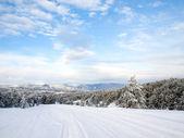 Camino nevado. — Foto de Stock