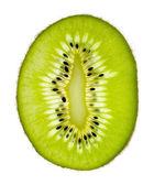 Kiwi sur blanc. — Photo