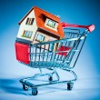 Shopping cart and house — Stock Photo