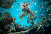 Freedive — Stock Photo