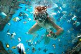 freedive along the brain coral — Stock Photo