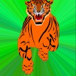 Symbol of the new year- tiger — Stock Photo