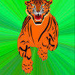 Symbol of the new year- tiger — Foto Stock