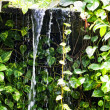 Small falls in tropics - Stock Photo
