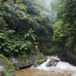 Gitgit Waterfall — Stock Photo