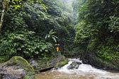 Gitgit Waterfall — Stock Photo