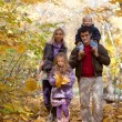 Family Enjoying Walk In Park — Stok fotoğraf #8739701