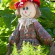 Ridiculous rag scarecrow costs in kitchen garden — Stock Photo #8905800