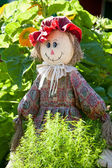 Ridiculous rag scarecrow costs in a kitchen garden — Stock Photo