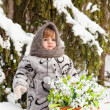 Little girl in a winter wood with the big basket of snowdrops - Stock Photo