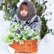 Little girl in a winter wood with the big basket of snowdrops — Stock Photo #9294300
