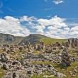 Mountain Altai — Stock Photo #9558836