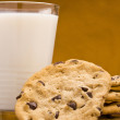 Chocolate Chip Cookies - Stockfoto