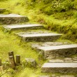 Stone Steps — Stock Photo #10211525
